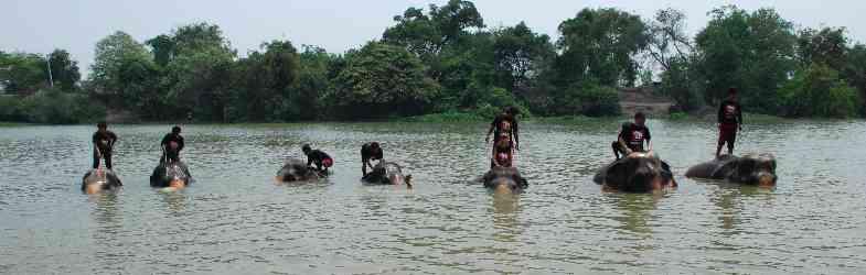 Aktiviteter i Ayutthaya